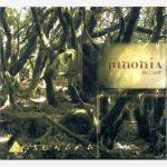 Junonia Minor